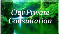 Our Private Consulation
