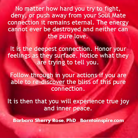 your soul mate connection barbara rose phd borntoinspire