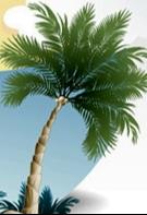 _-PALM-TREE-ICON-2